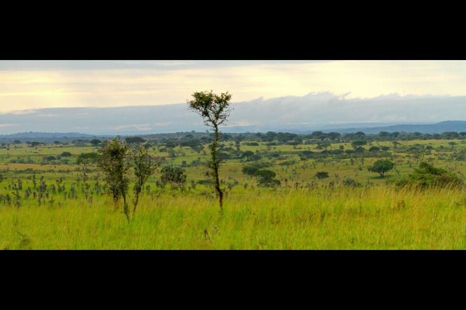 , Murchison waterfalls national park, Landscapes, Uganda