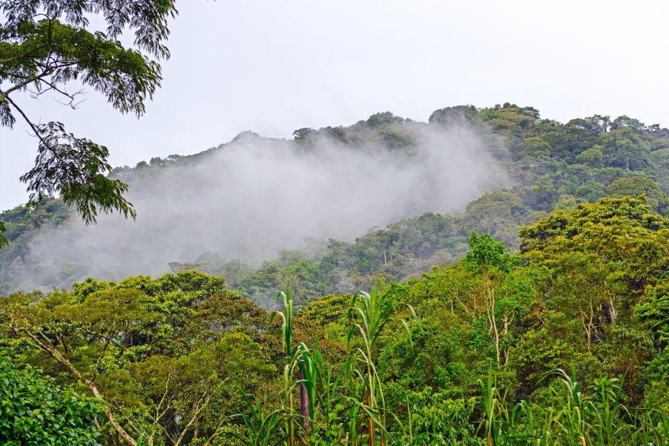 El Parque Nacional de Bwindi, Los paisajes, Uganda