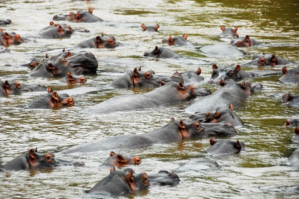 Queen Elizabeth national park, Landscapes, Uganda