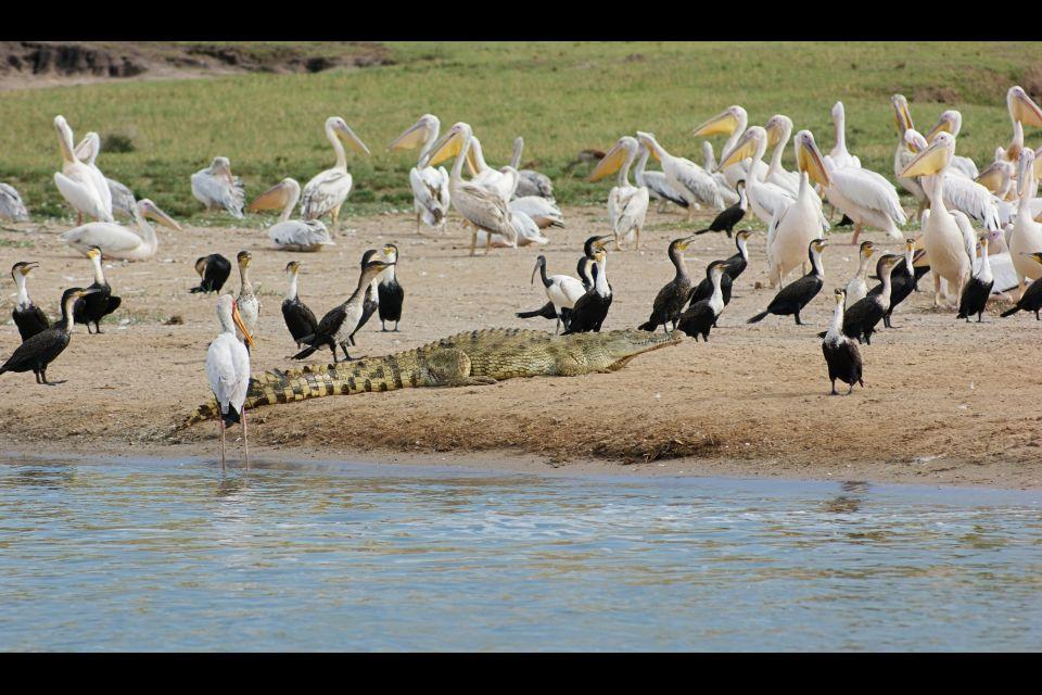 , Queen Elizabeth national park, Landscapes, Uganda