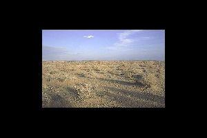 Les steppes , Ouzbékistan
