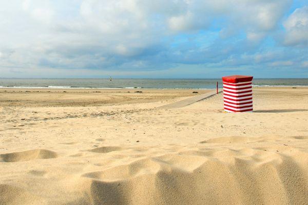 Wadden, hollande, pays-bas, ile, plage, sable, europe, baignade, vacances.