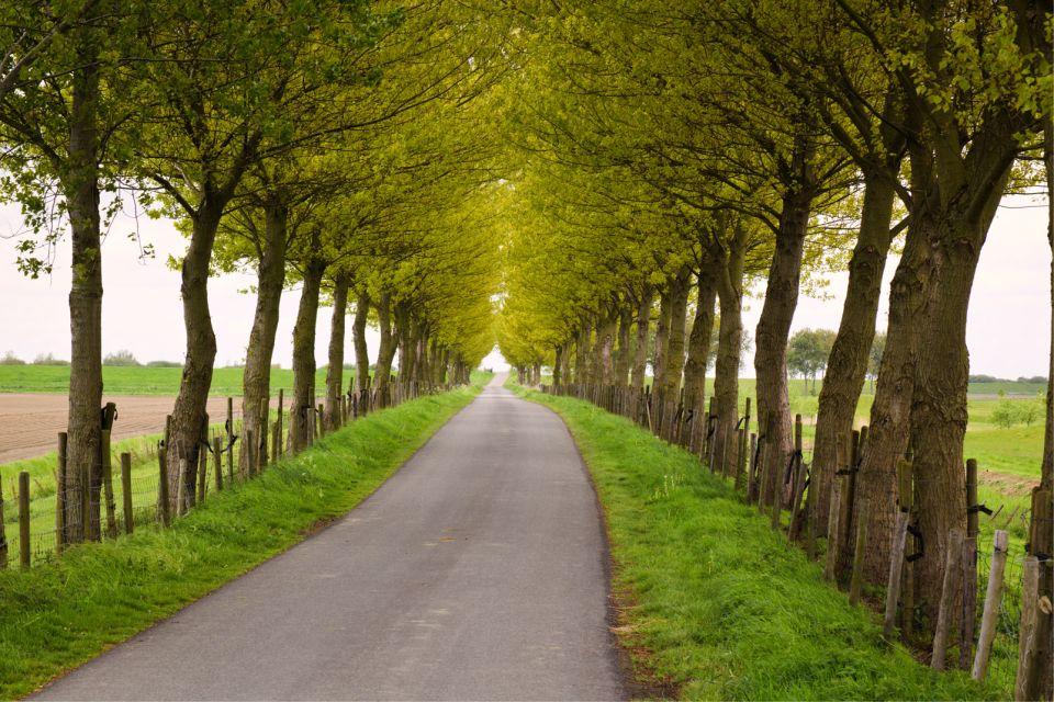 La Zélande , Parcs nationaux , Pays-Bas