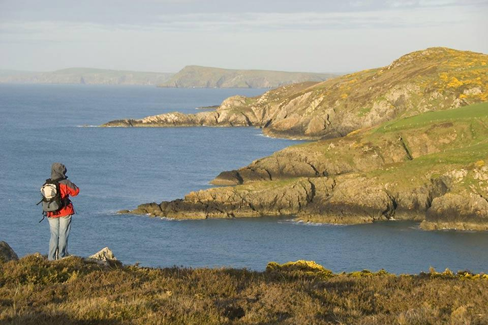 Die Westküste , Ein Wanderer am Meer in Pembrokeshire , Großbritannien