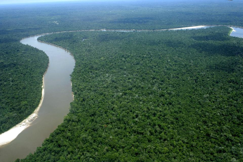 La jungle amazonienne , Pérou
