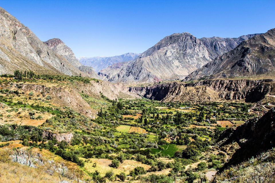 Misti volcano and Colca canyon , Peru