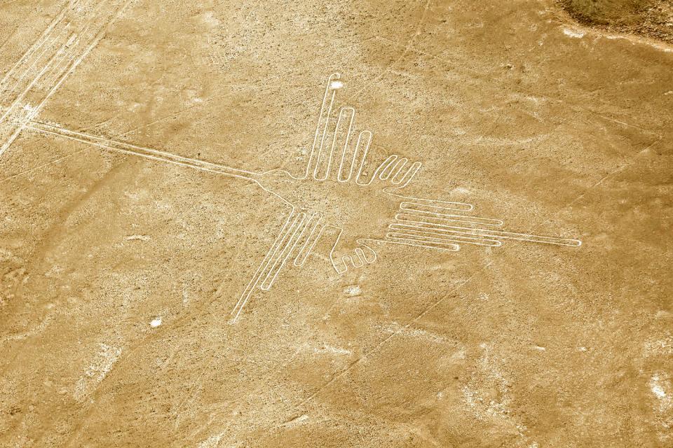 Le linee di Nazca , Il Colibrì , Perù