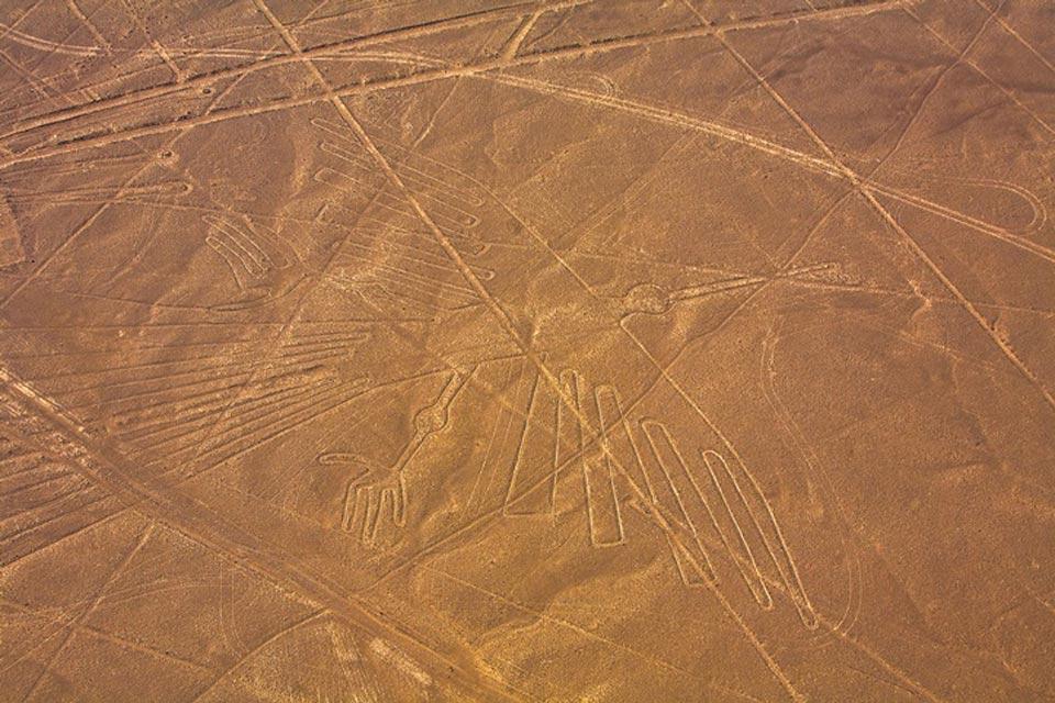 Le linee di Nazca , Il Condor , Perù