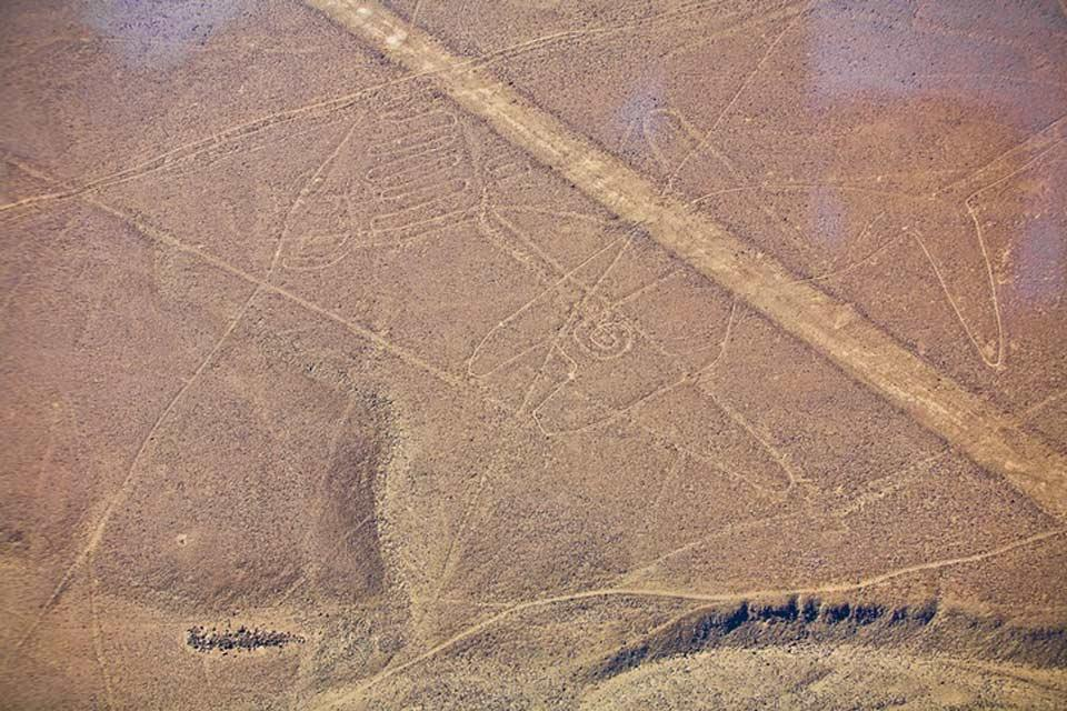 Le linee di Nazca , La Balena , Perù
