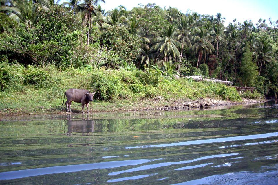 Pagsanjan o el infierno vegetal, Pagsanjan o el infierno vegetal (Luzón), Los paisajes, Filipinas