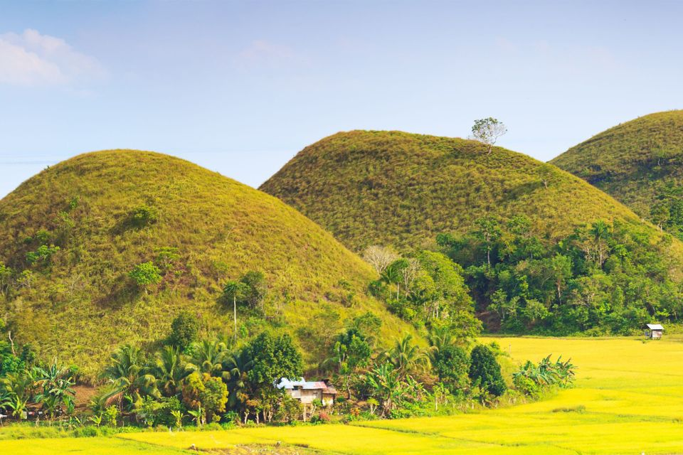 The Chocolate Hills, Landscapes, Philippines