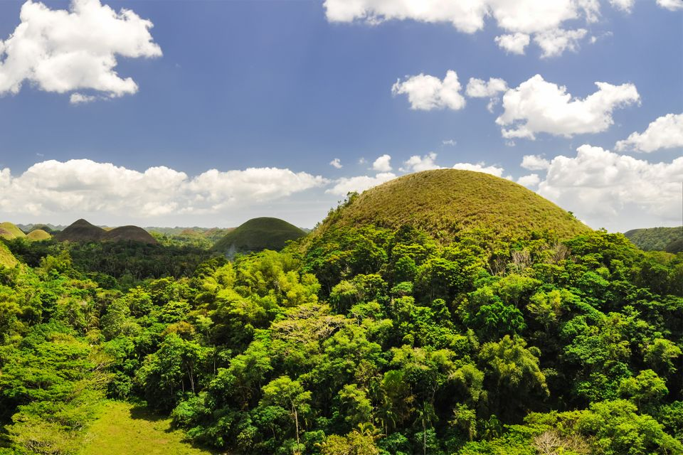The size of the hills., The Chocolate Hills, Landscapes, Philippines