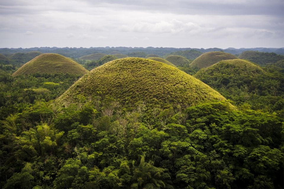 The composition of the hills., The Chocolate Hills, Landscapes, Philippines