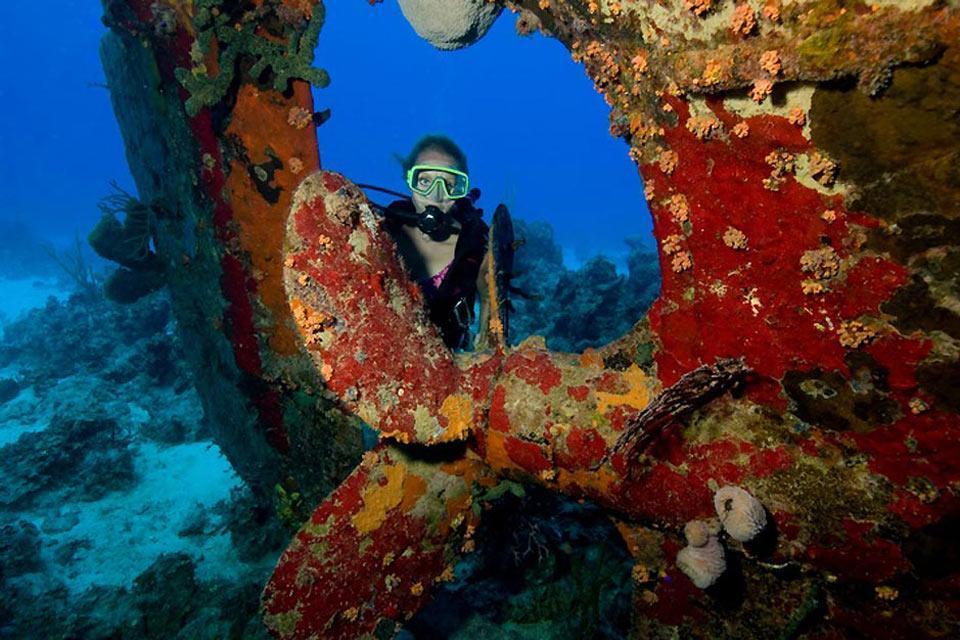 Le immersioni , Il muro di Andros , Bahamas