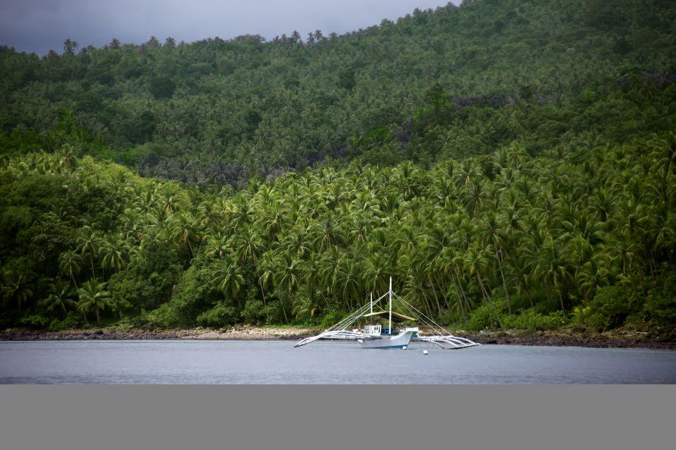 L'immersione nelle Filippine, Escursione nell'arcipelago delle Visayas, Le rive, Filippine