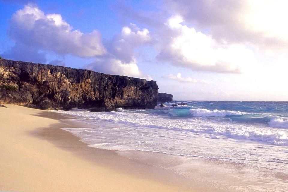 A steep cliff, The south-eastern coast, Coasts, Barbados