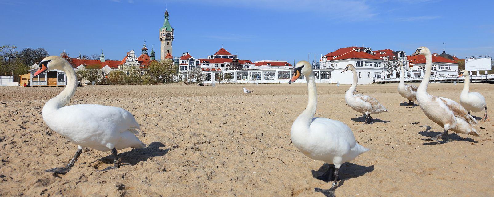 Sopot und Gdynia , Polen