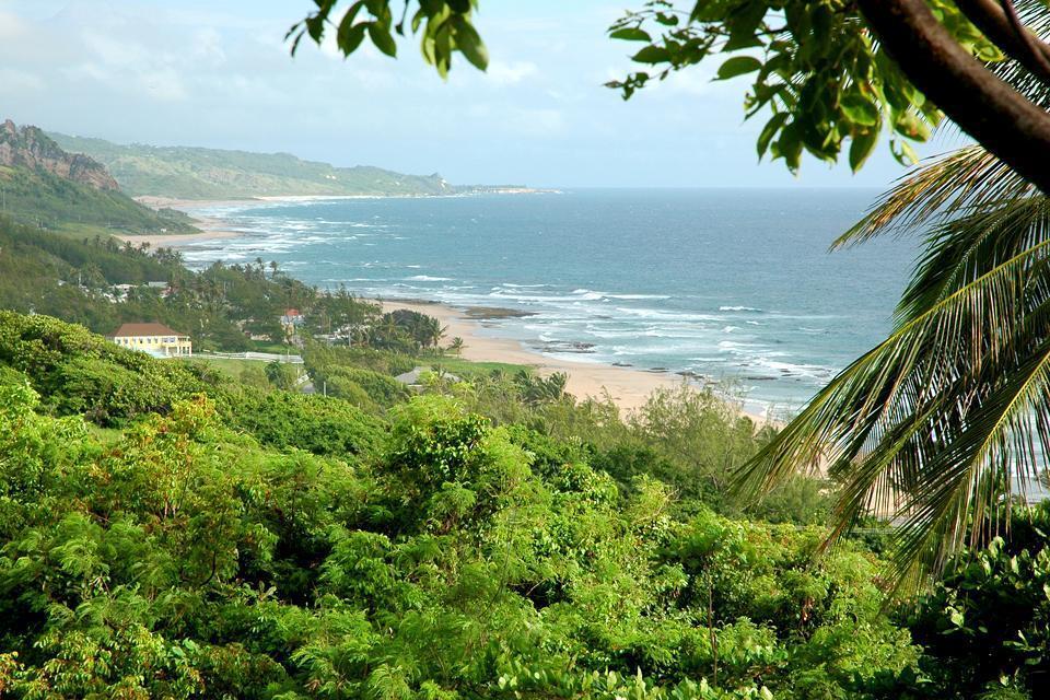 La costa oriental , Barbados