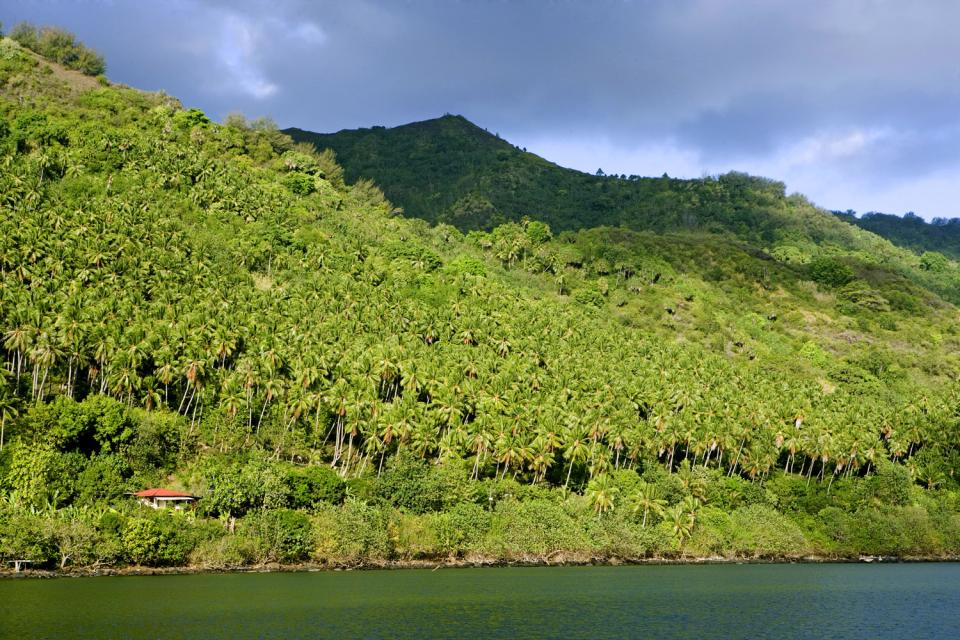 Nuku Hiva , Polinesia francese