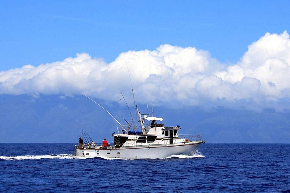 Sport fishing bahamas for Bahamas fishing license