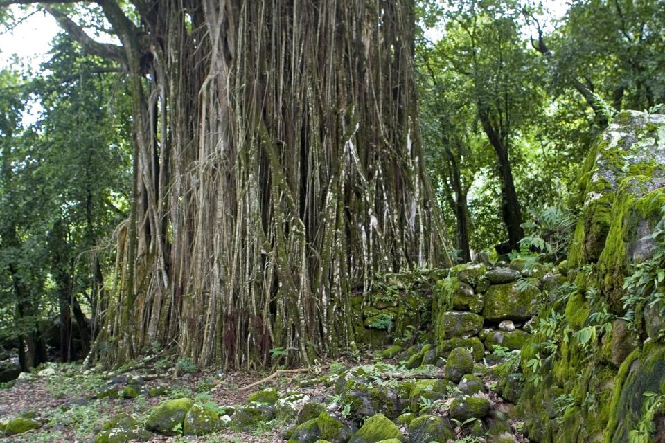 Los restos de Naku Hiva , Polinesia