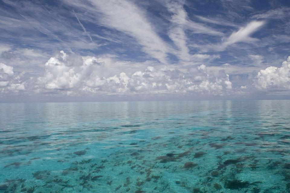 Grand Bahama , Paradise Cove Beach , Bahamas