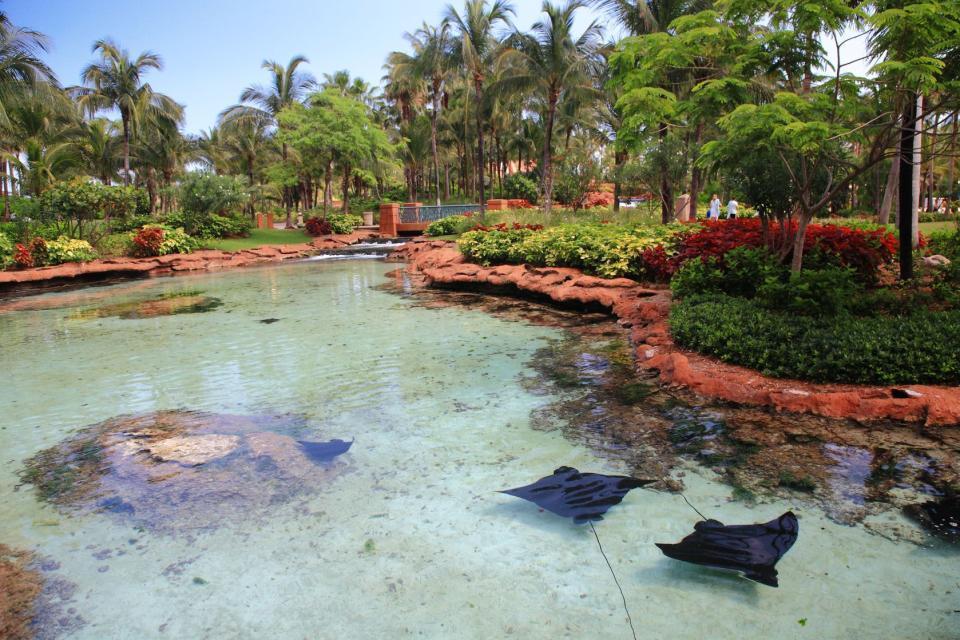 Grand Bahama , Der Lucayan-Nationalpark , Bahamas