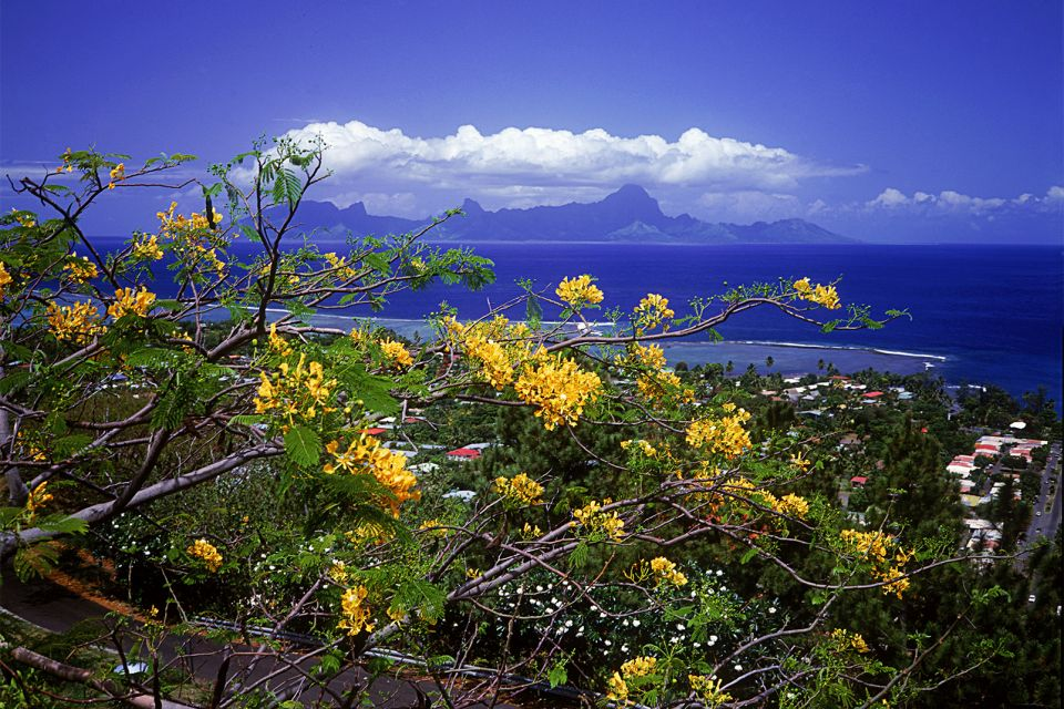 Les paysages, polynésie, tahiti, tahiti nui, grande tahiti, océanie, france, montagne, océan