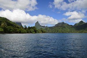 Océanie, Polynésie, Mooréa, baie d'Opunohu, iles du vent, archipel de la Société, france