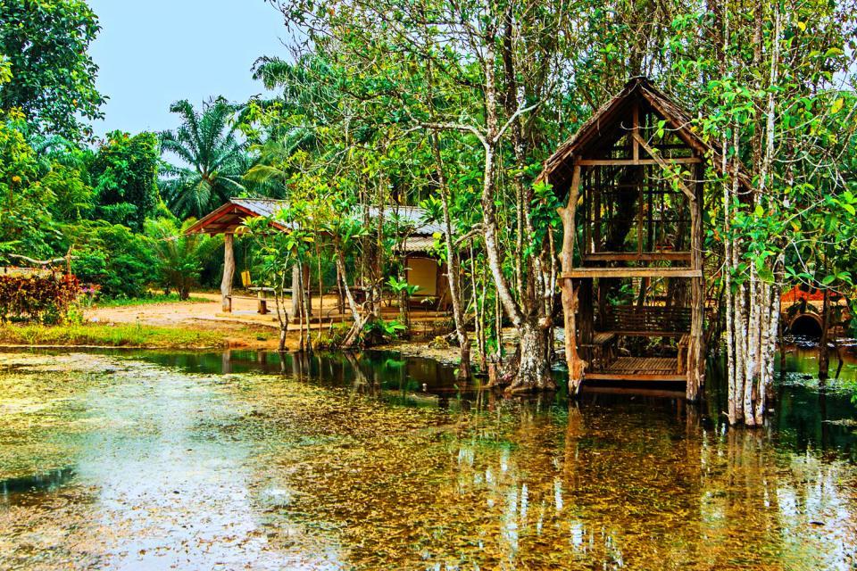 Las excursiones , Excursiones , Polinesia