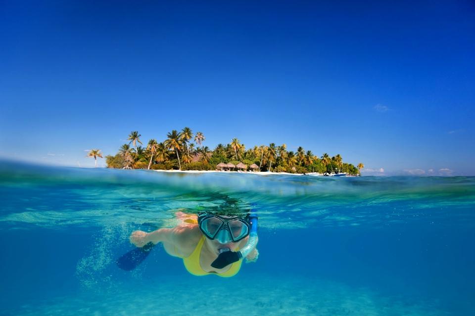 Diving, Scuba diving, The fauna and flora, Tahiti, Bora Bora