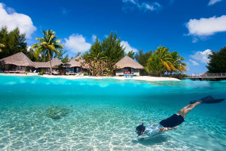 Scuba diving , French Polynesia