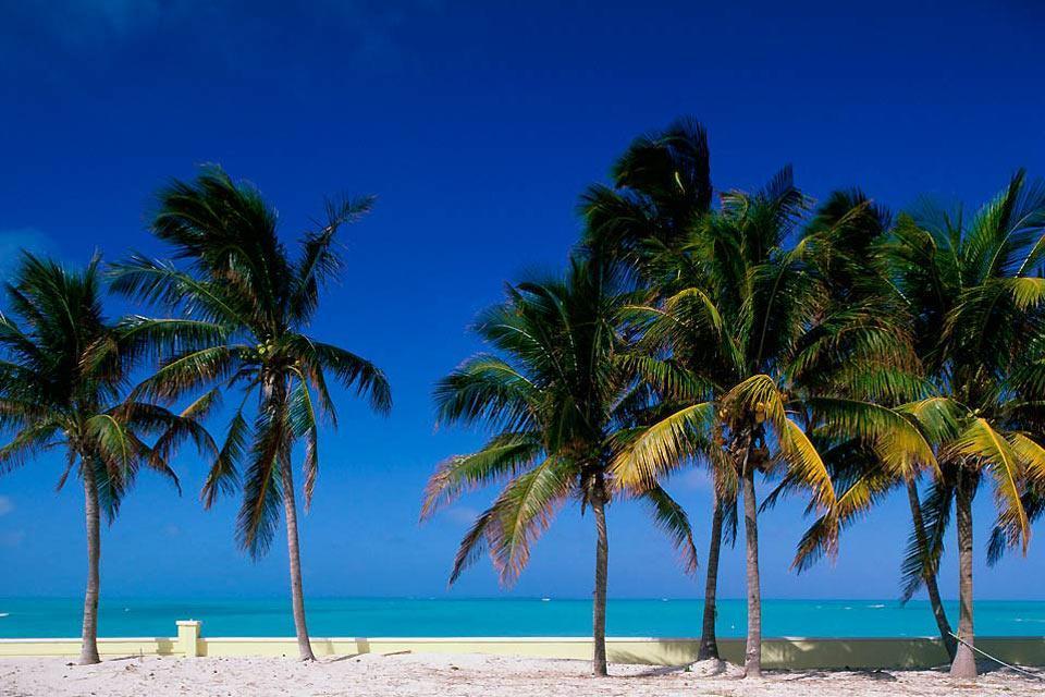 Abaco , Guana Cay , Bahamas