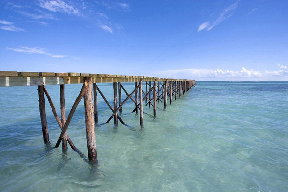 Abaco , Le riserve delle isole Abaco , Bahamas