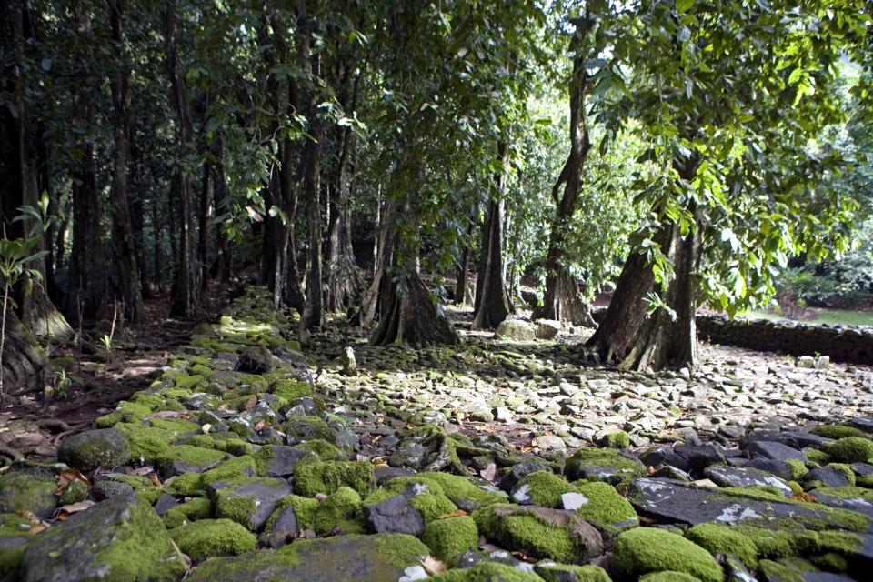 El <EM>marae</EM> de Titiroa (Moorea) , El marae de Titiroa (Moorea) , Polinesia