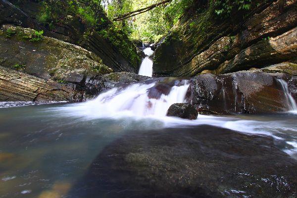 El Yunque forest , Puerto Rico