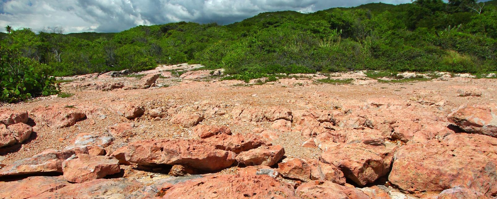 guanica county Guanica: county: guánica municipio: timezone: america  zip code 00653 is located in south puerto rico and covers a slightly less than average land area compared .