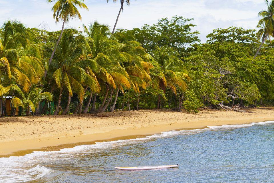 Le surf sur les plages du Nord-Ouest , Porto Rico