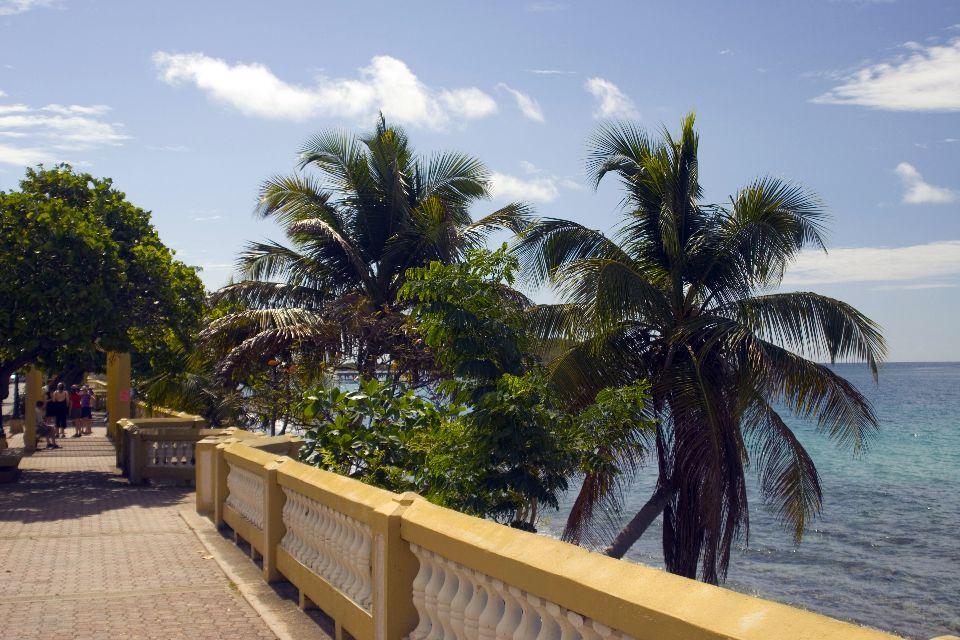 L'isola di Vieques , Porto Rico
