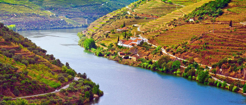 Le nord sauvage , La vallée du Douro , Portugal