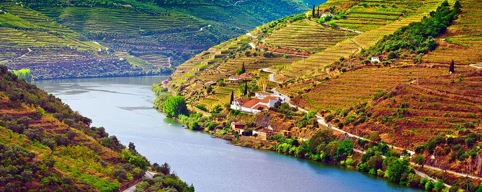 El valle del Douro