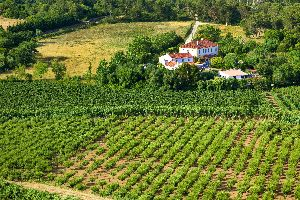 L'Estremadura e Las Beiras , Il Portogallo versione campagna , Portogallo