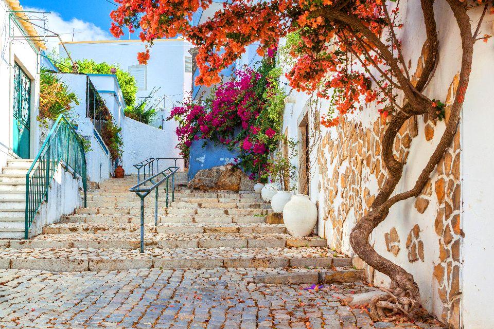 La flora dell'Algarve , La città vecchia , Portogallo
