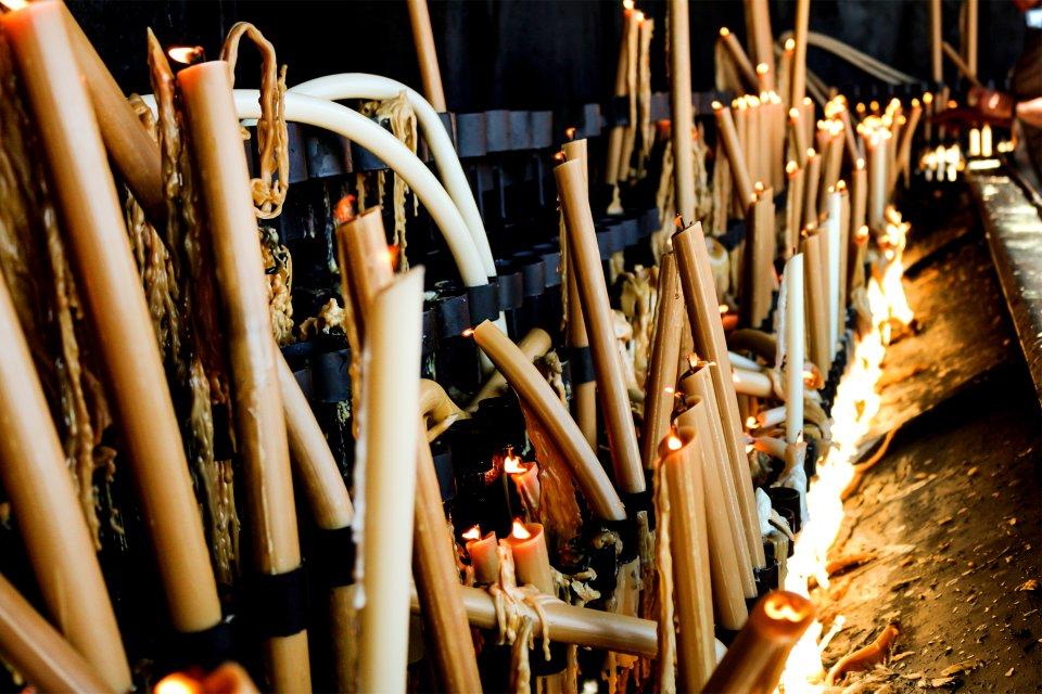Olivos sagrados, Fatima, Arte y cultura, El Norte y el Centro de Portugal