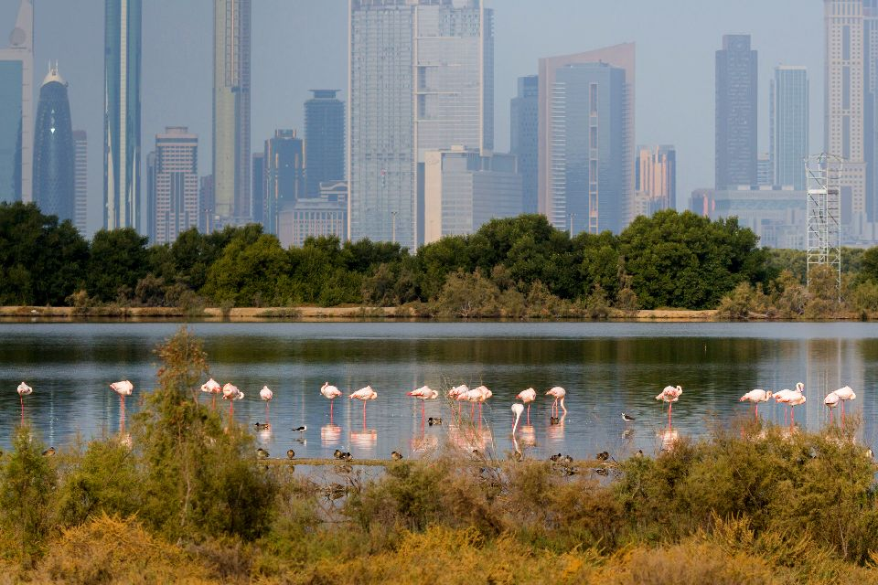 La ciudad costera de Al-Khor , Qatar