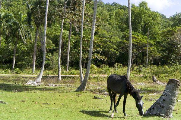 Die Täler , Dominikanische Republik