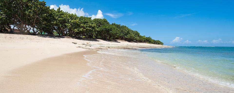 The amber coast the real dominican republic dominican republic