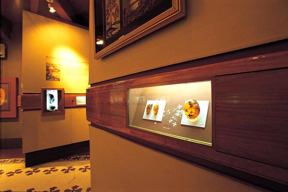 D'importantes réserves d'ambre , Musée de l'ambre , République dominicaine