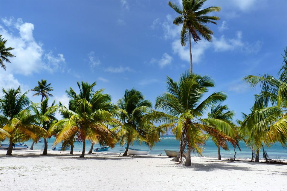 The pearl of the Caribbean coast, Isla Saona, Islands and beaches, Punta Cana, Dominican Republic