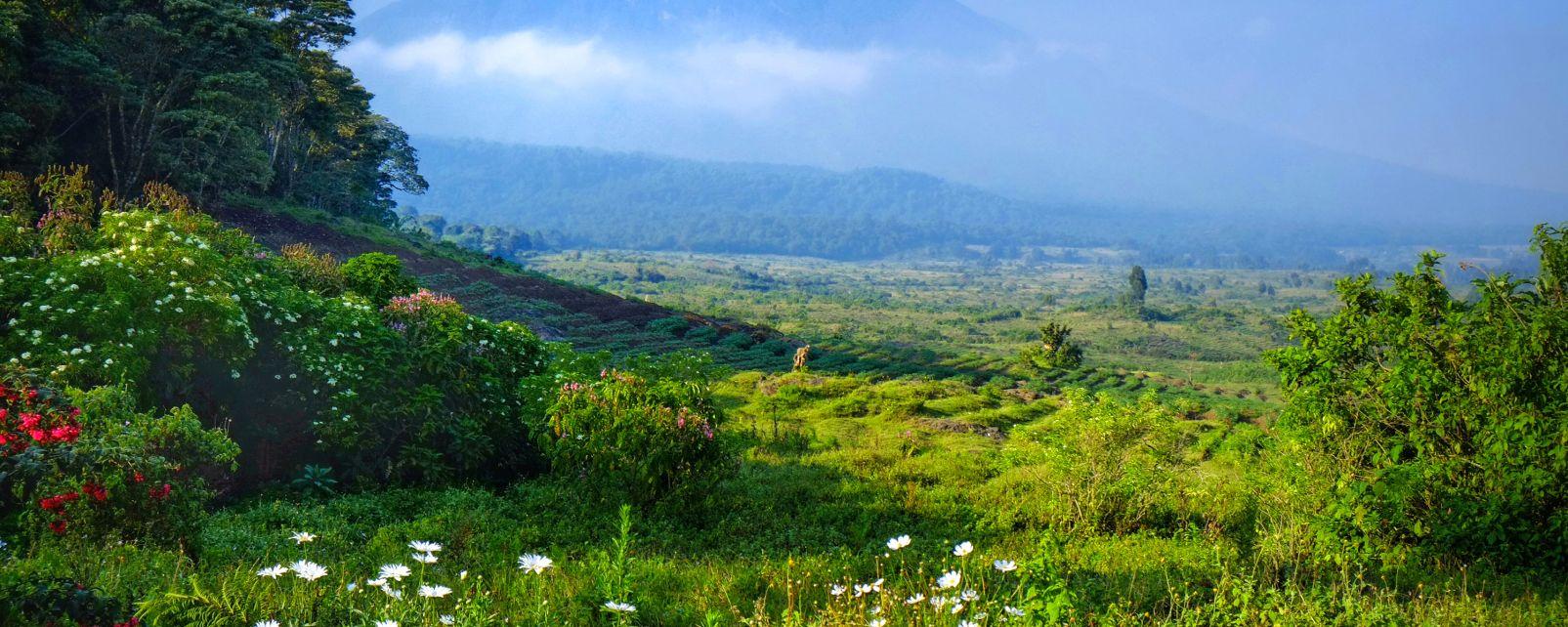 , El Parque Nacional de Virunga, Los paisajes, República Democrática del Congo